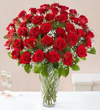 Rose Elegance - 4 Dozen Red