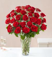 Rose Elegance - 3 Dozen Red