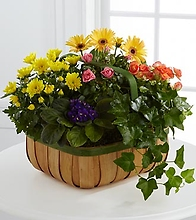 The Gentle Blossoms™ Basket